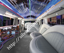 DFW Seasonal Events- rent a limo or party bus from Silver Image Limo